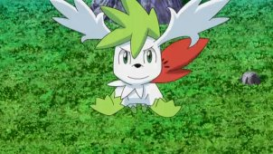 Fly Shaymin! To the Far Side of the Sky!!