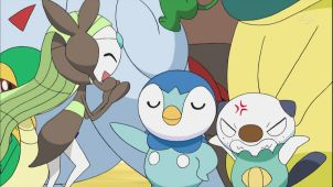 Piplup VS Pansage, the Magnificent Battle!!