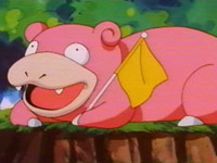 Episode 246: Slowpoke's Knowledge! Ash's Knowledge!