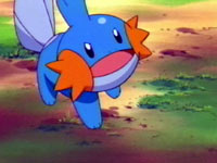 Episode 301: The Secret Pond! Full of Mudkip!