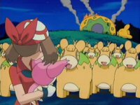 Skitty & Assist! Meadow Of Numel!