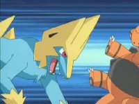 Return to Mauville Gym! VS. Manectric!