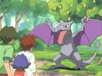 Pok�mon Researcher Gary & The Revived Aerodactyl