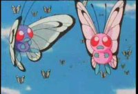 Episode 21: Bye Bye Butterfree!