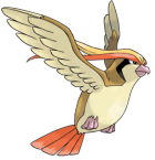 Pidgeot Art