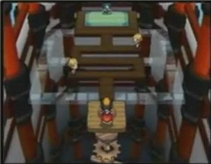 HeartGold & Soul Silver - Gym Leaders