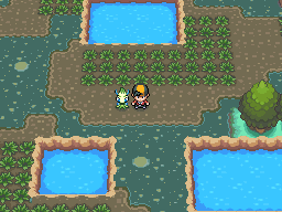 HeartGold & Soul Silver - Safari Zone
