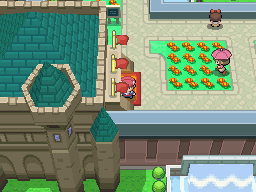 Pokémon Platinum - Battle Castle