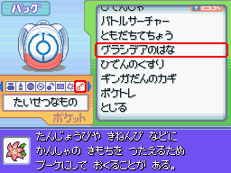 Pokémon Platinum - Item List