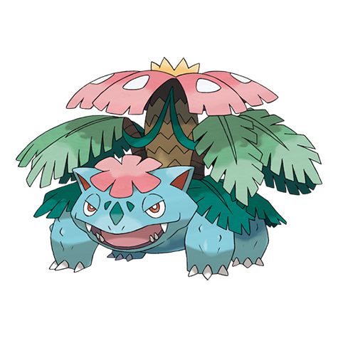 Mega Venusaur Artwork