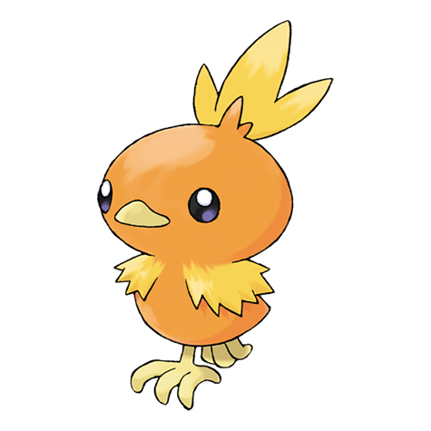 Torchic Artwork