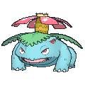 Male Venusaur