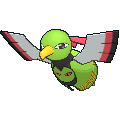 Female Xatu