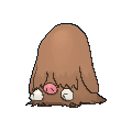 Female Piloswine