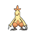 Female Combusken