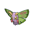 Female Dustox