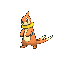 Female Buizel