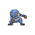 Female Croagunk